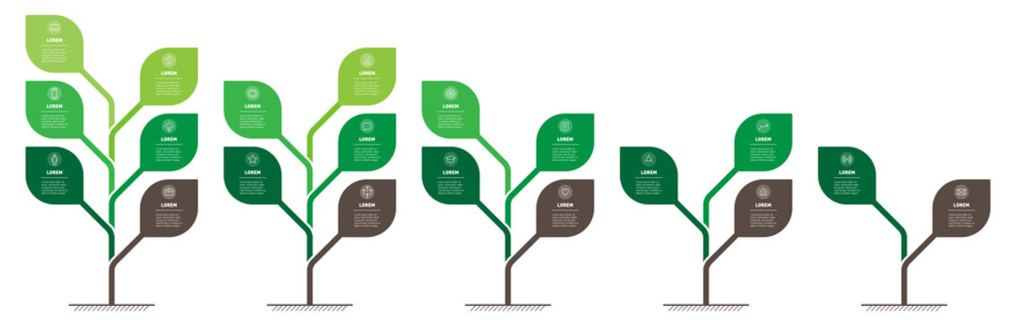 Business presentation with 5 steps or processes. Info graphic. Vertical infographics or time lines with 2, 3, 4, 5, 6 parts. Stylized trees with leaves. Development and growth of the green technology.