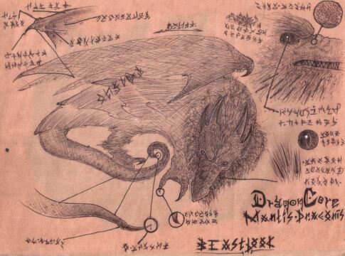 Dragon-Manticore Hybrid BeastBook page