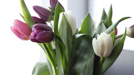 Obraz Tulipany kolorowe bukiet - fototapety do salonu