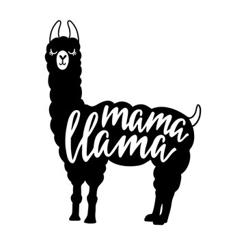 Mama Llama funny quote. Typography poster, apparel print, mother day greeting card design.