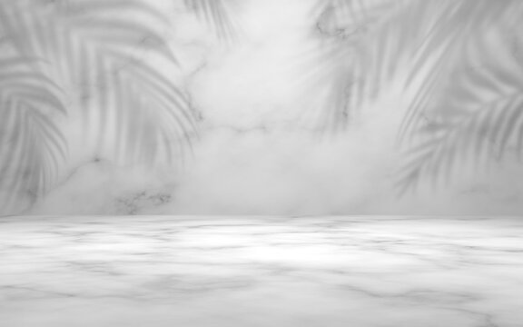 Empty marble white gray color with leaf plant shadow on wall studio background.