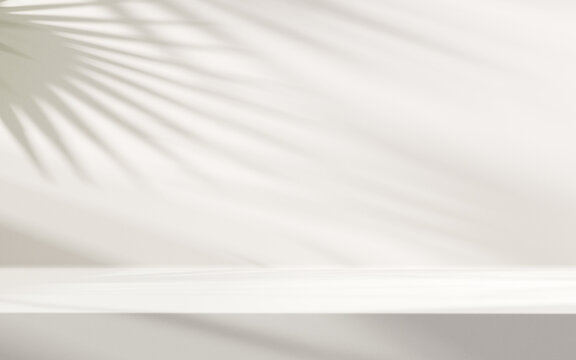 Minimal abstract background for product presentation. Leaf shadow on white plaster wall. 3d render. Spring and summer.