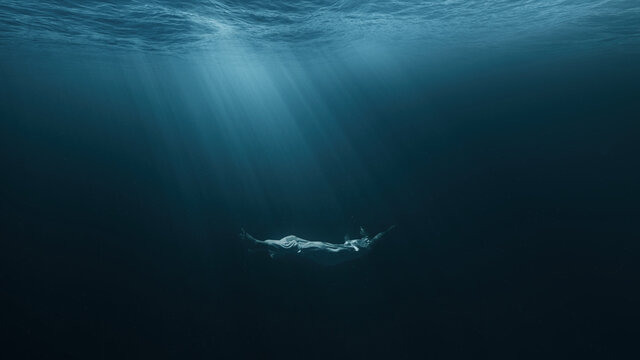 Beautiful Young Woman Sinking Into Abyss Darkness Deep Ocean Underwater Sadness Loneliness Unhappy Sorrow Misery Sadness Domestic Violence Family Problems Stress Suicide