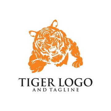 A Tiger angry animal sports mascot holding a soccer football ball and breaking through the background with its claws.