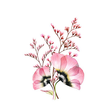 Watercolor bouquet. Transparent pink anemones with delicate branches isolated on white. Hand painted vintage artwork. Botanical illustration for cards, wedding design