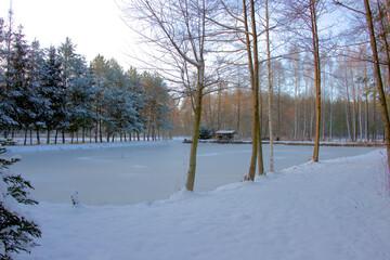 Zamarznięty staw zimą.