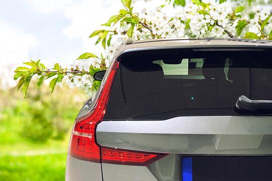 Car window mockup spring landscape
