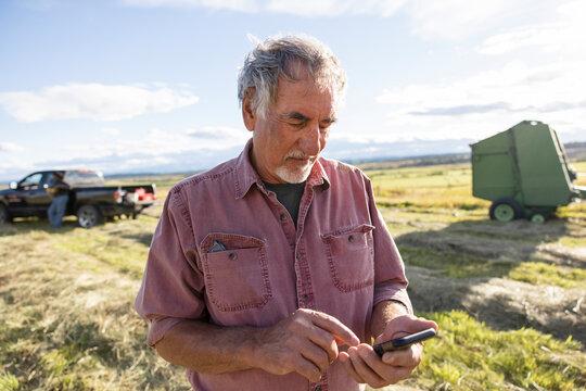 Senior male farmer using smart phone in sunny rural farm field
