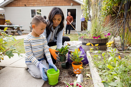 Mother and son repotting plants in garden