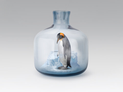Penguin in jar with melting ice