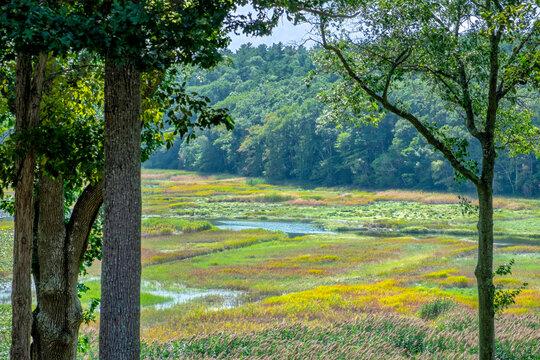 North River and marsh in Marshfield, Massachusetts, USA.