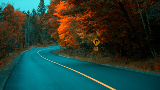 Golden colours of Muskoka, Ontario, Canada; a road trip to Ontario's one of the best cottage sides. Vibrant warm Fall colours juxtaposing a rainy cool day.