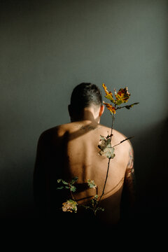 Back view anonymous shirtless male sitting in dark room near tender thin plant twig with withering leaves