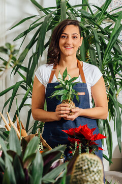 Delighted female gardener in apron transplanting green plant while working in flower shop looking at camera