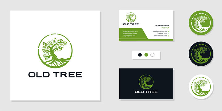 Tree of life logo and business card design template inspiration