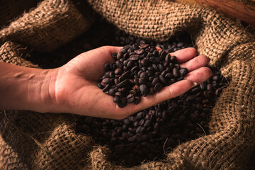 Handful of raw coffee beans in hand on dark background.