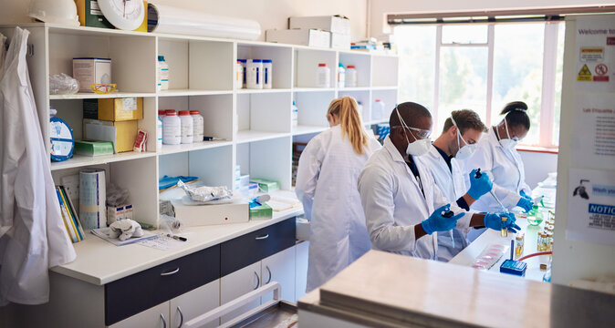 Diverse group of technicians analyzing samples in a lab