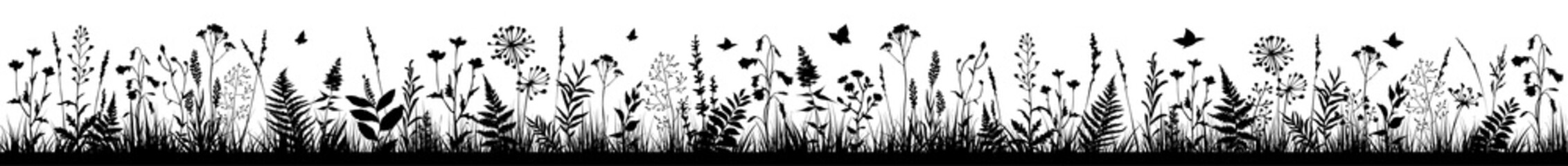 Long floral background with black silhouettes of meadow wild herbs and flowers. Wild flowers. Wild grass.