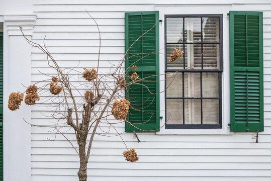 USA, Massachusetts, Cape Cod, Provincetown. Window.