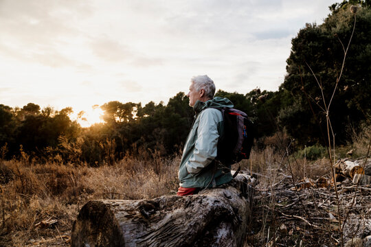 Senior male hiker with hands in pockets sitting on wooden log while looking at view during weekend