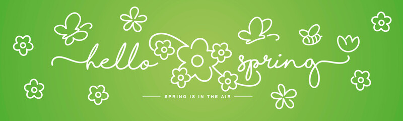 Fototapeta Hello Spring handwritten typography lettering spring is in the air with  white flowers, butterflies and bee on green background drawing in line design obraz