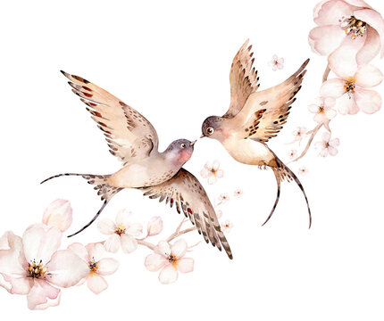 Watercolor spring flying swallows isolated and blossom flowers on white background