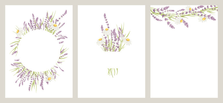 Summer bouquet. Birthday or Wedding cards. Vector design element, wreaths of lavender and chamomile, medicinal herbs.