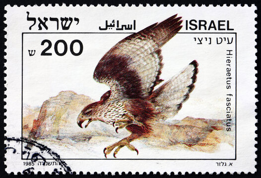 Postage stamp Israel 1985 Bonelli's eagle, bird of prey