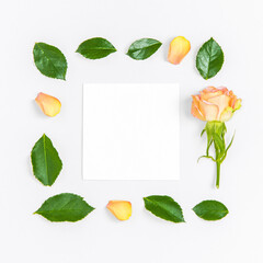 Creative layout composition of flowers on pastel background.