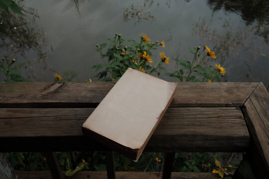 A book by the lake in the fall season