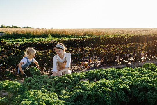 Happy farmer with kid harvesting kale in field