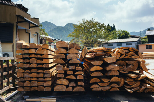 Trees Are Put to Get Dry at Wooden Processing Plant in Japanese Countryside