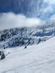 Idyllic winter resort landscape