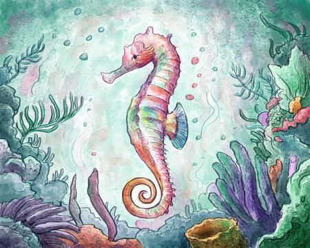 Seahorse Watercolor Illustration