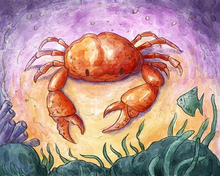 Crab Underwater Watercolor Illustration