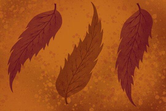 Fal Leaves illustration