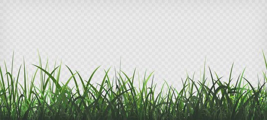 Obraz Green grass template. Seamless pattern - fototapety do salonu