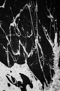 White Paint Splattered On Pavement