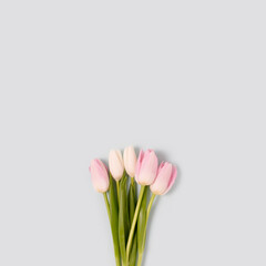 Bouquet of pink tulip flowers on a blue pastel background. Floral concept with place for text.