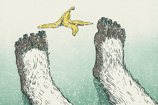 Yeti Feet Slipped On Banana Peel In Winter