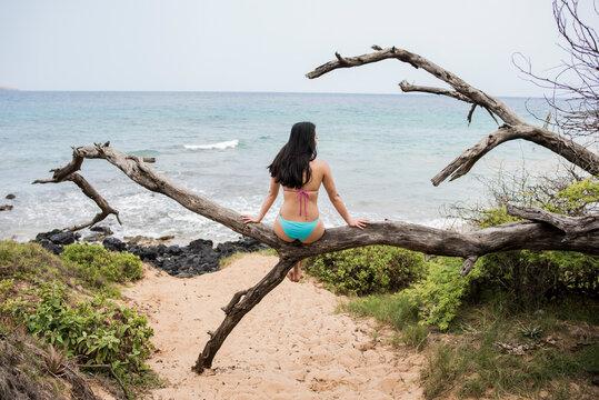 Woman sitting on log on beach, Makena Beach, Maui, Hawaii