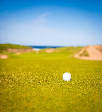 golf ball on a fairway