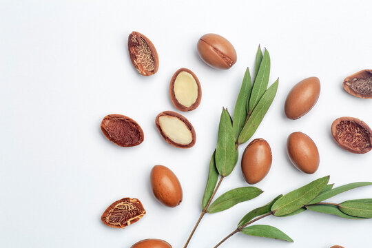 Argan seeds isolated on a white background. Argan oil nuts with plant. Cosmetics and natural oils background