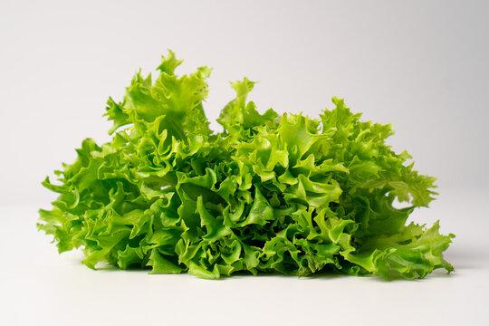 Bunch of lettuce leaves. Green lettuce on a light background. Green loose leaf lettuce. Coral lettuce