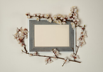 Flower arrangement. Wooden photo frame and border of spring branches of a blooming apricot on a pastel gray background.