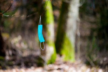 Blue surgical face mask hanging on a branch in the forest. Fototapete