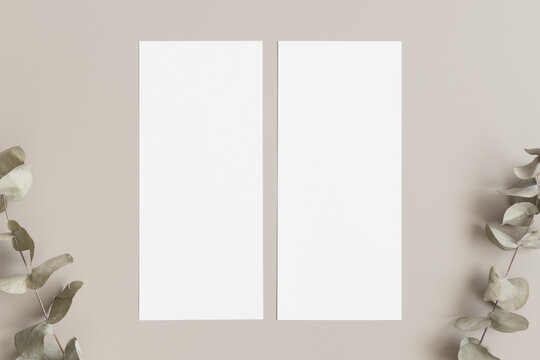 Two menu cards mockup with an eucalyptus deocoration, 4x9 ratio.