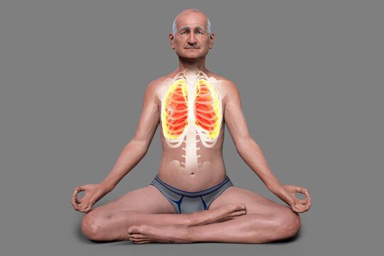 A man in Lotus yoga position, or Padmasana, with highlighted lungs