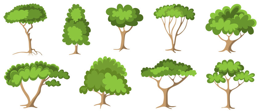 Set of green trees with foliage - fruit tree painted in the modern doodle style, coloring book for children. Icon for garden magazine, outline drawing symbol.