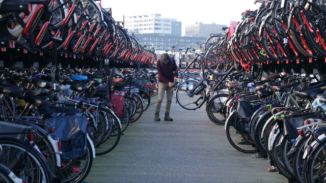 Man Holding Bicycle In Parking Lot